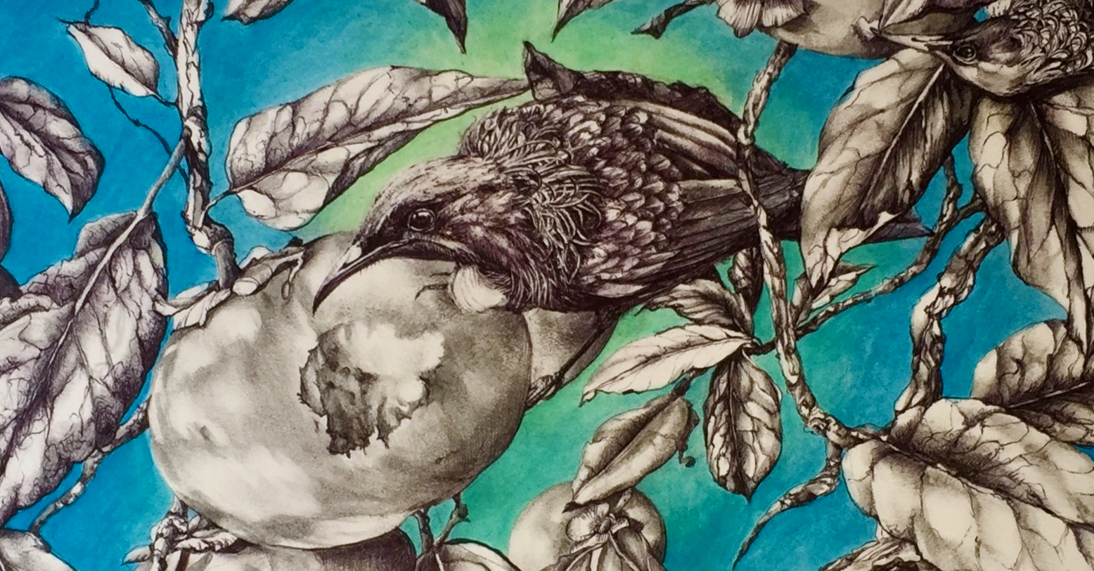 """Detail from """"Tui in Persimmon Tree"""" by Becs Wood"""